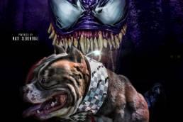 Louis V Line's Venom | Top American Bully Stud | Texas Size Bullies